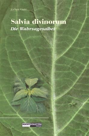 Salvia Divinorum Wahrsagesalbei