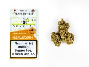 GRAVITY Harlequin Hanfblüten Tabakersatz