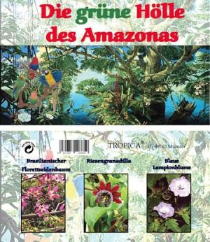 Die grüne Hölle des Amazonas