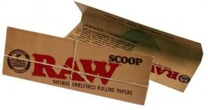 Raw Scoop Card (Füllhilfe)