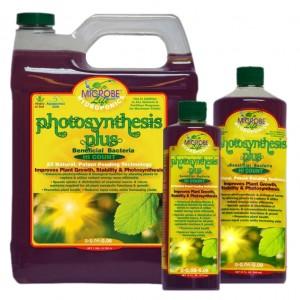 Microbe Life Photosynthesis Plus