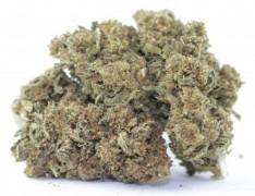 Greeners Northern Lights Indoor Cannabis Blüten Tabakersatz