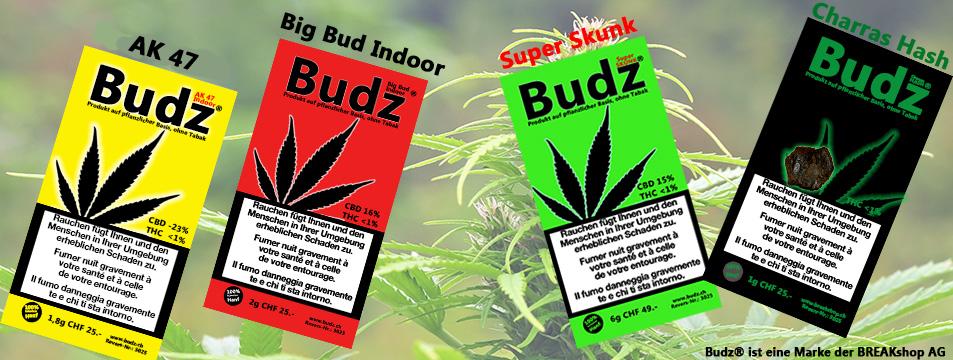 Budz Hanf Blüten Tabakersatz